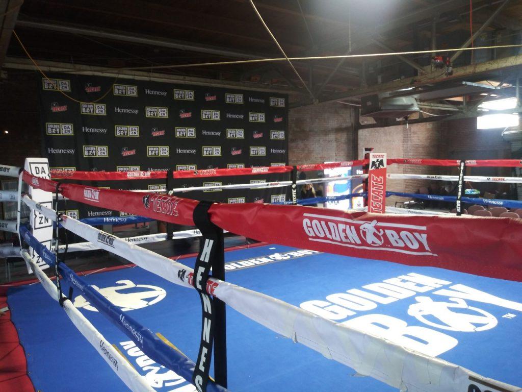 Alexis Texas Boxing alex rincon – clutch city boxing